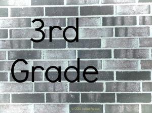 brick wall g3